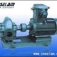 2CY系列齿轮润滑油泵生产厂家图片
