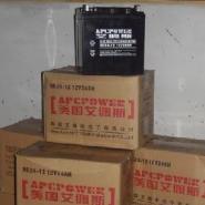UPS专用电池图片