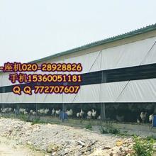 供应用于的江西南昌赣州猪舍卷帘-透光猪场卷批发