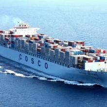 供应天津到泉州海运代理 纸品海运代理 价格优惠