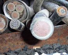 供应厦门废品收购废塑料废金属收购批发
