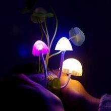 供应阿凡达蘑菇灯/陶瓷树脂LED夜灯