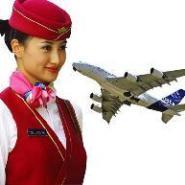 机票加盟哪家好/京都飞客机票代理图片