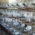 24位商品兔笼12位子母兔笼图片
