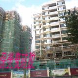 供应广东佛山瓷砖粘结剂普通型瓷砖胶