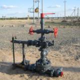 供應油田抽油機密封裝置