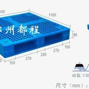 河南1111系列塑料托盘图片