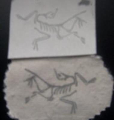 标签印刷青岛图片/标签印刷青岛样板图 (3)