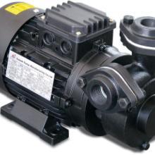 供应进口高温油泵 模温机油泵 高温水泵 高温泵 冷水泵 进口高温批发