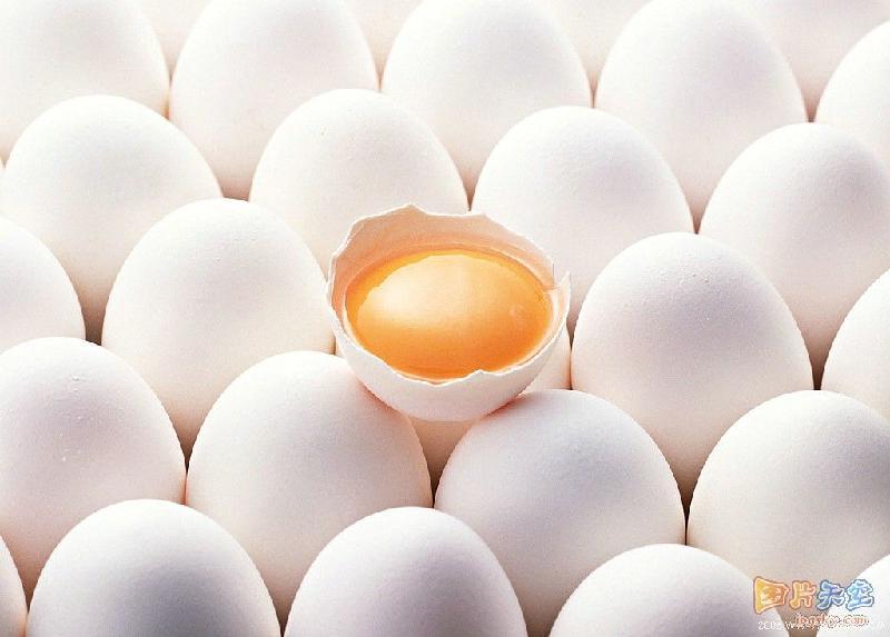 土鸡蛋图片大全图片