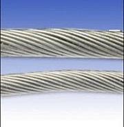 耐温310不锈钢钢丝绳图片