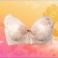 功能理疗文胸磁疗保健文胸贴牌生产图片