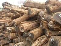 木材进口代理图片/木材进口代理样板图 (1)