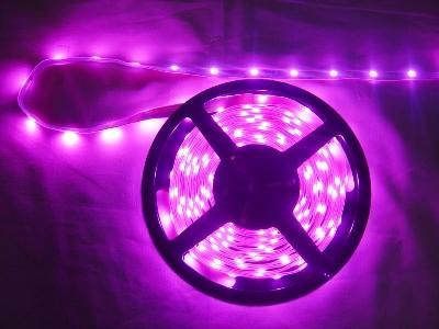 供应成都LED灯条价格LED灯带批发