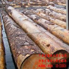 南美酸枝进口物流代理-卓海进口贸易专业物流代理整个物流过程