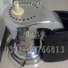 供应苹果榨汁机-水果榨汁机