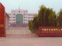 山东阳谷玻璃工艺制品厂