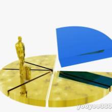 供应中国音像制品行业深度调研及投资前景预测报告