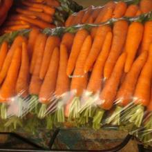 供应武汉胡萝卜的价格