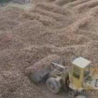 干木薯淀粉作用