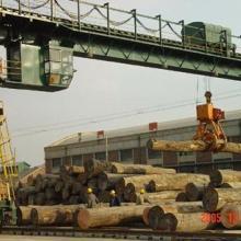 天津港进口木材板材原木报关清关图片