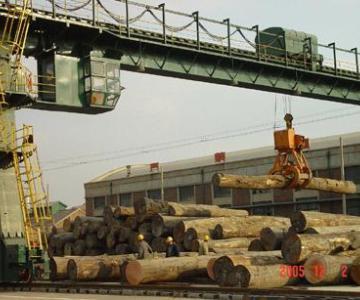 供应天津港进口木材板材原木报关清关代理国际收付汇代理图片