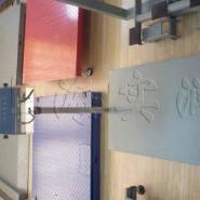 200公斤不锈钢电子台秤图片