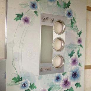 家装天花效果图铝扣板铝天花代理商图片