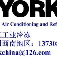 YORK工艺气体回收冷冻机组图片