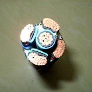 氟塑料高温电力电缆图片