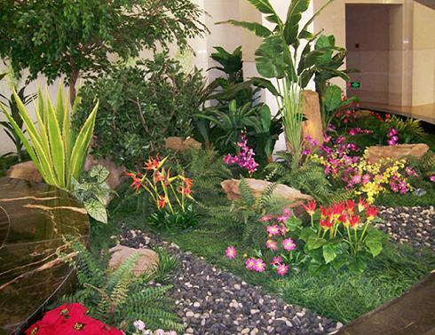 景观植物图片