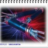 供应耐火控制电缆NH-KVV