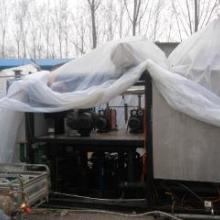 供应13平方真空冷冻干燥机