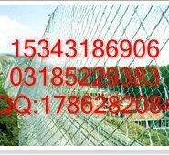 狂甩GAR2钢丝绳网图片