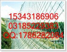 衡水倍佳狂甩GAR2钢丝绳网GAR1柔性防护网,库存安全防护产品