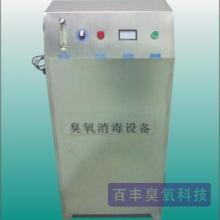 供应食品饮料加工用水臭氧发生器