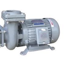 供应污水处理泵/污水处理泵厂家/污水处理泵/管道泵厂家图片