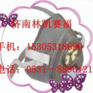 3M3100/3200单滤盒防尘防毒半面具图片
