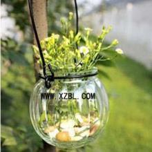 南瓜装饰铁线吊瓶水培南瓜玻璃瓶