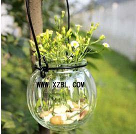 南瓜装饰铁线吊瓶水培南瓜玻璃瓶图片