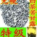 福建特级全叶绿色苦甘露图片