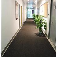 供应深圳销售3M4000地毯型地垫