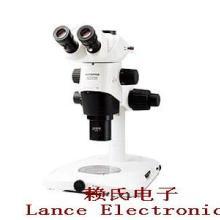 供应显微镜,显微镜生产厂家,显微镜供应商