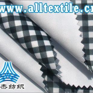 30D双面针织布PTFE复合布料图片