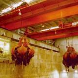 供应QZ型抓斗起重机 珠海QZ型抓斗起重机配件 QZ型抓斗起重机维修