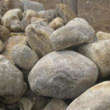 供应河南鹅卵石多少钱一吨图片