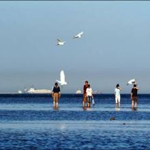 供应武汉夏天去哪里好玩 哪里凉爽 夏天哪里好玩 北戴河玩沙玩水避暑