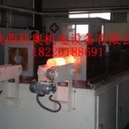 GTR透热炉图片