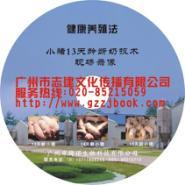 天河VCD光盘包装图片