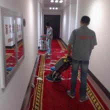 供应太原长风街地毯清洗